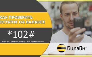 Как узнать свой номер, тариф и баланс в сети Билайн