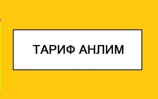 Тариф Билайн «Анлим» – подробное описание, плюсы и минусы, как подключить